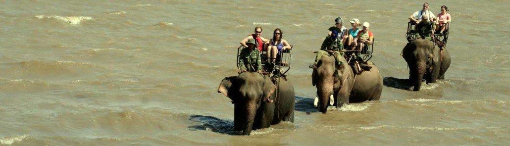 Vietnam Discovery - Vietnam Tours - Vietnam Travel elephant-ride-vietnam