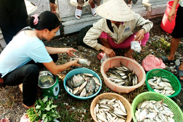 Vietnam Discovery - Vietnam Tours - Vietnam Travel - best time to visit Mekong