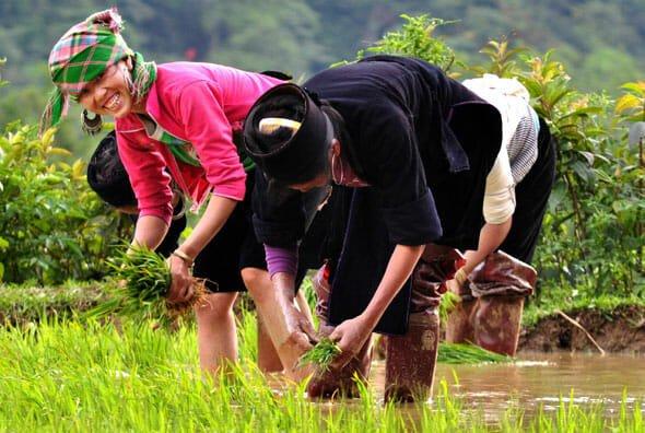 Vietnam Discovery - Vietnam Tours - Vietnam Travel - Holidays to Vietnam