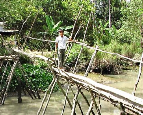 Mekong boat tours